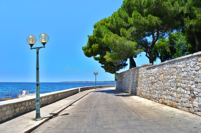 Promenade in Porec Koniferenbäume und adriatisches Meer lizenzfreie stockbilder
