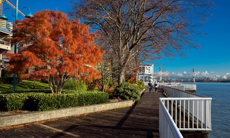 Promenade  quay at Fraser River. Promenade  quay on the  riverfront of Fraser River  in New Westminster city,  three bridges over the river at autumn time royalty free stock images