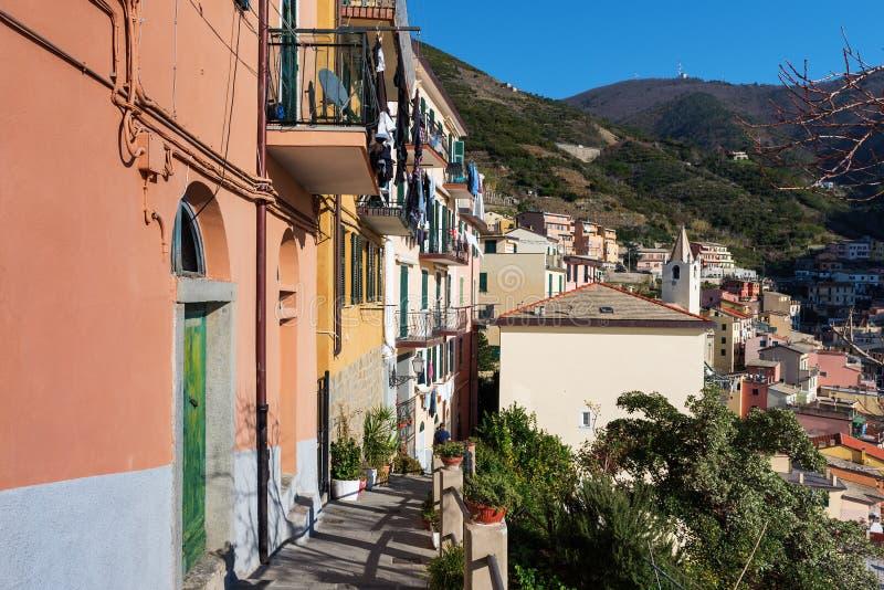 'promenade' soleada a lo largo de casas del color de la ciudad de Riomaggiore, Italia fotos de archivo libres de regalías