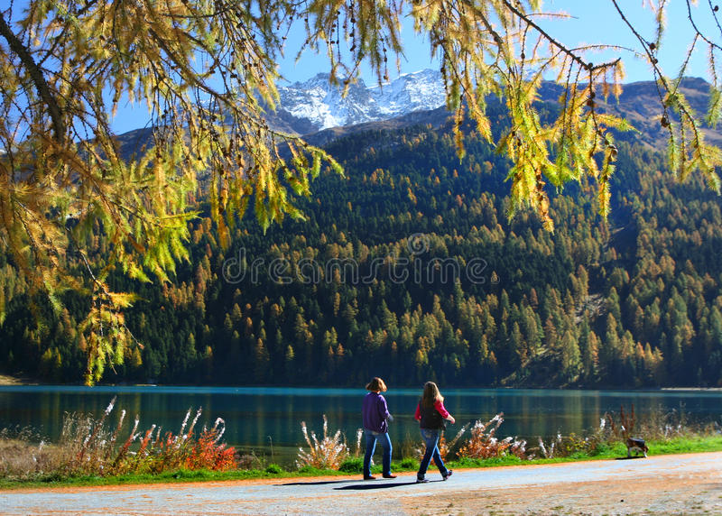 Promenade on the swiss lake stock photo
