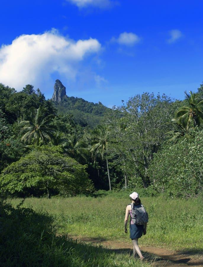 Promenade tropicale photographie stock