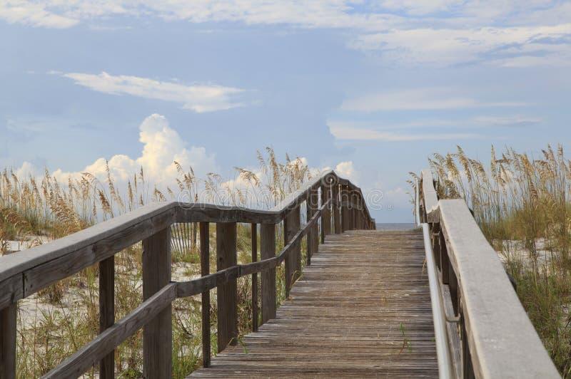Promenade zu einem weißen Sand-Strand von Florida lizenzfreies stockbild