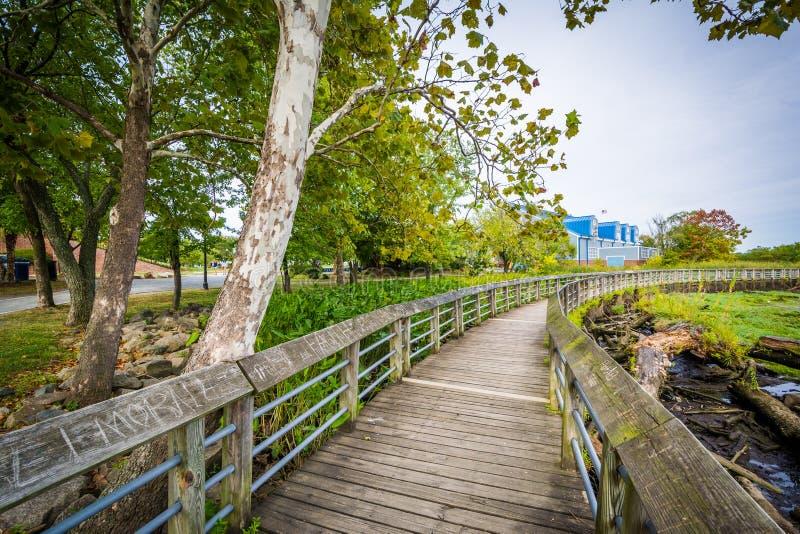 Promenadenspur in einem Sumpfgebiet, am Rivergate-Stadt-Park, in Alexand lizenzfreies stockbild