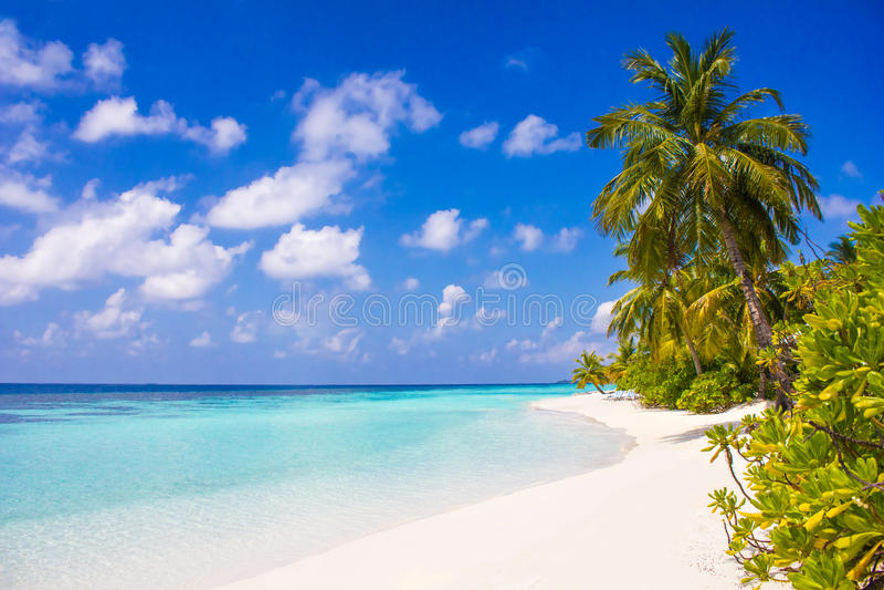 Promi Flitterwochen-Erholungsort in den Malediven, Eden auf Erde lizenzfreies stockbild