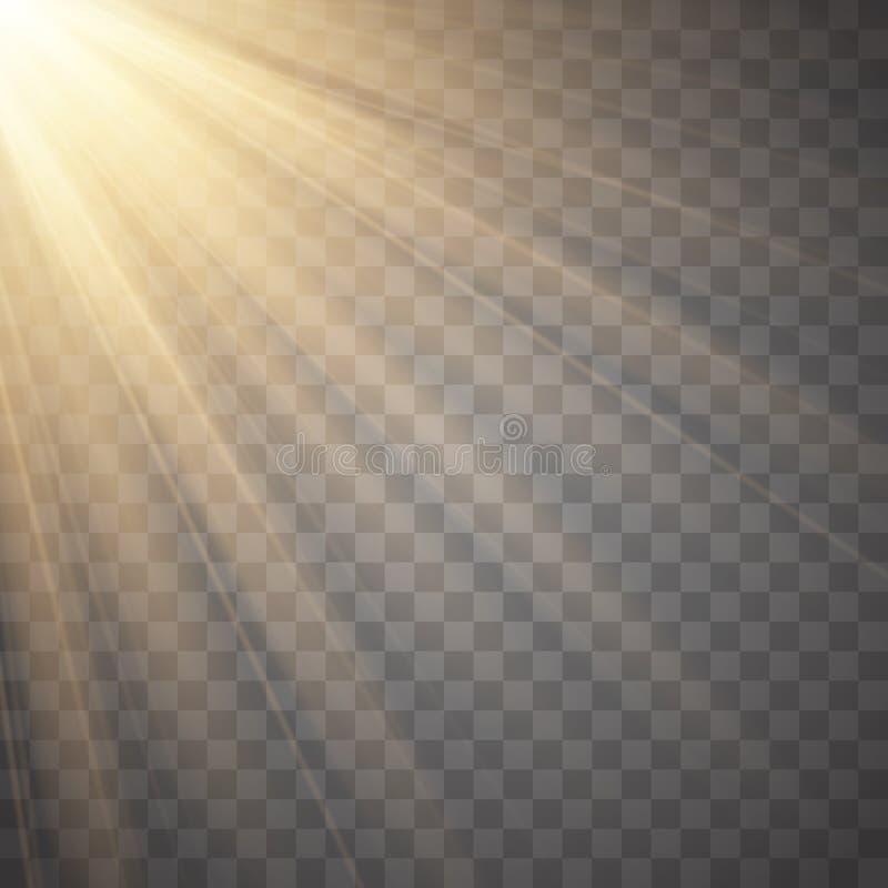 Promienie odizolowywający na przejrzystym tle światło Złoty światło reflektorów wektor royalty ilustracja