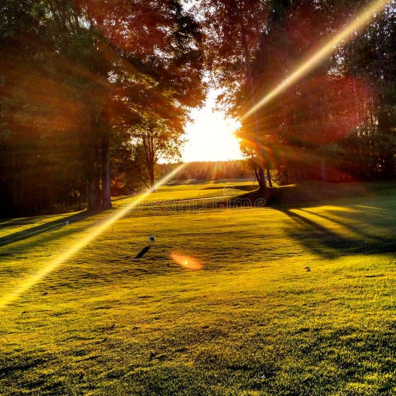 Promienie słońce obraz stock