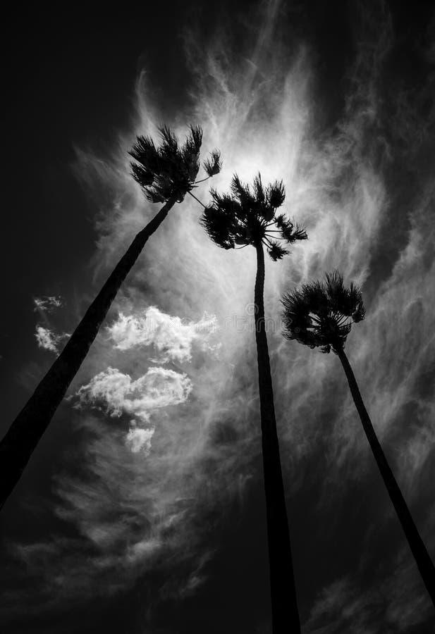 Pronóstico de la tormenta fotografía de archivo
