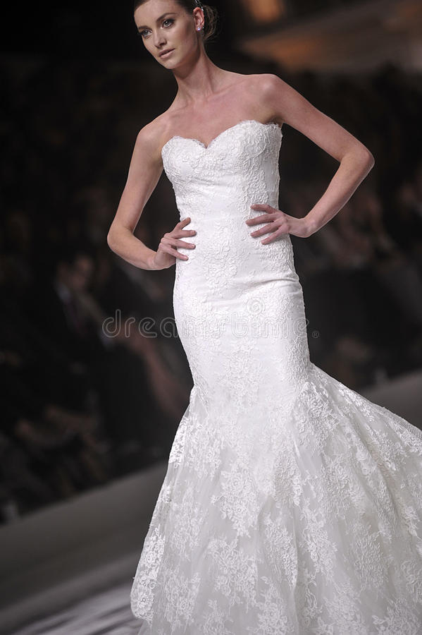 Pronovia 2014 Barcelona Bridal week royalty free stock photos
