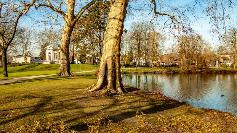 Proosdij公园的美好的部份看法有它的池塘的、树和茶圆顶或者Gloriette在背景中 库存图片