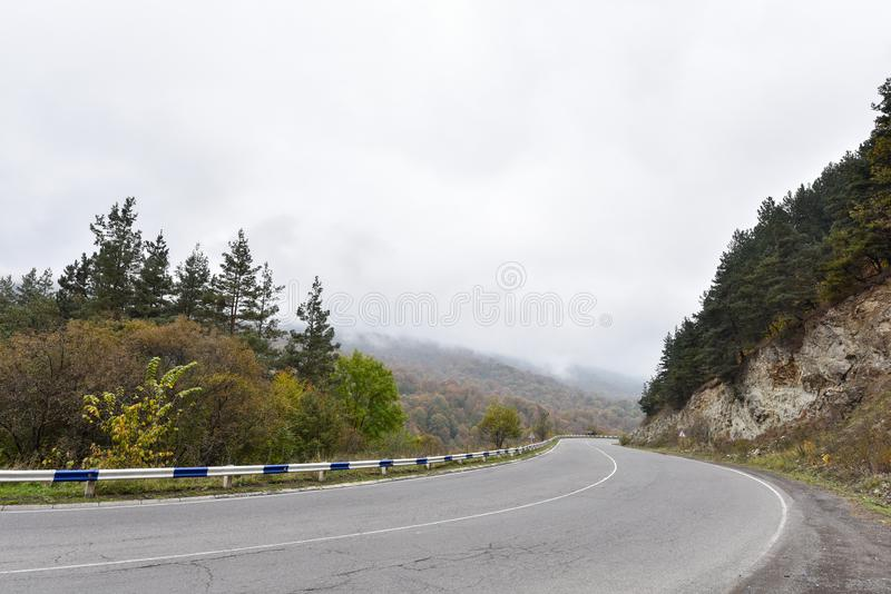 Propósito aéreo de curvar el camino y árboles en otoño imagen de archivo libre de regalías