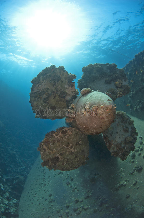 Download Propeller on a shipwreck stock image. Image of sunk, vessel - 26818175