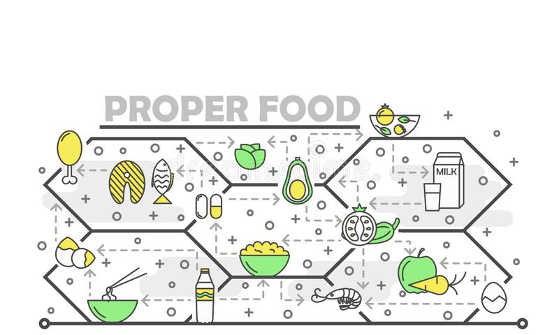 Vector thin line art proper food poster banner template stock illustration