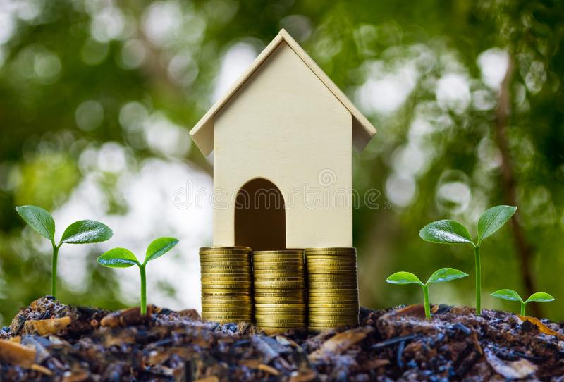 Property investment concepts. A small house model on stack of coins and plant growing on good soil with nature background. Depicts stock photo