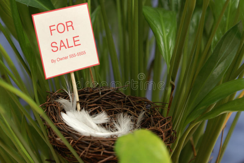 Download Property For Sale Stock Images - Image: 13965804