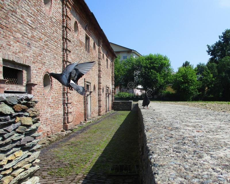 Property, Wall, Walkway, Cottage Free Public Domain Cc0 Image