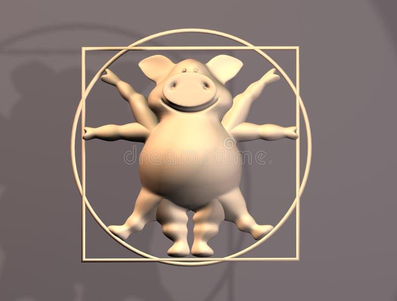 Proporzioni del maiale - animale di Vitruvius immagini stock libere da diritti
