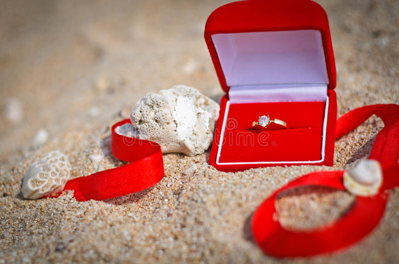 Propose At The Beach Stock Images