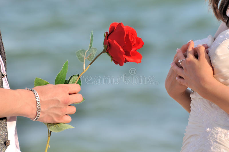 Propose for love and surprise royalty free stock images