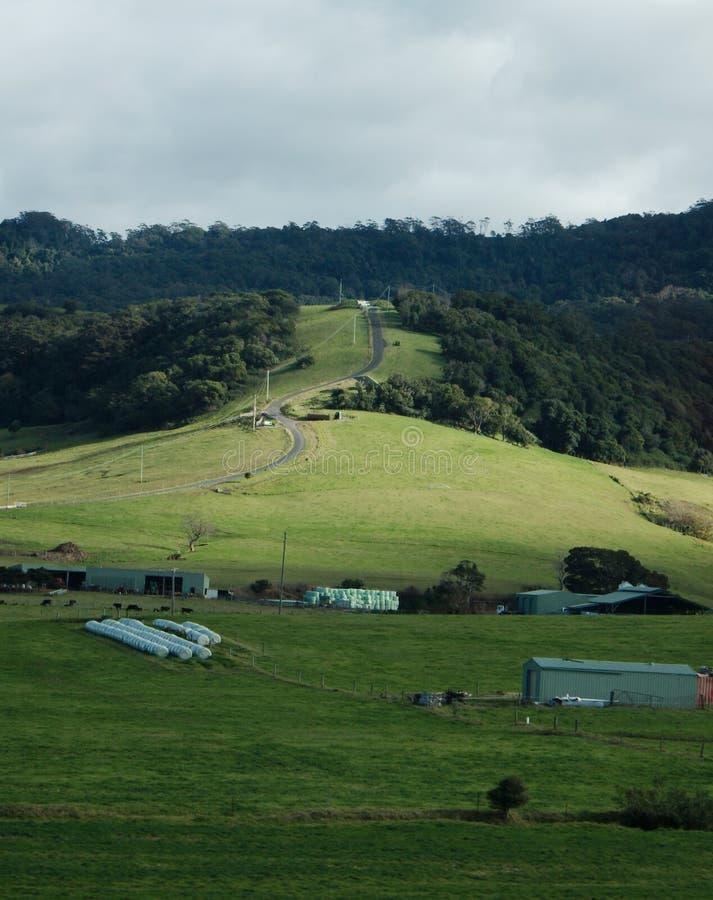 Propriété côtière de pâturage avec la route venteuse amenant la colline image libre de droits
