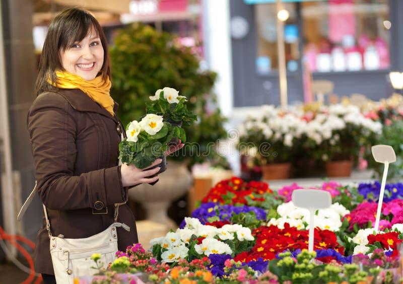 Propriétaire choisissant des fleurs au marché images libres de droits