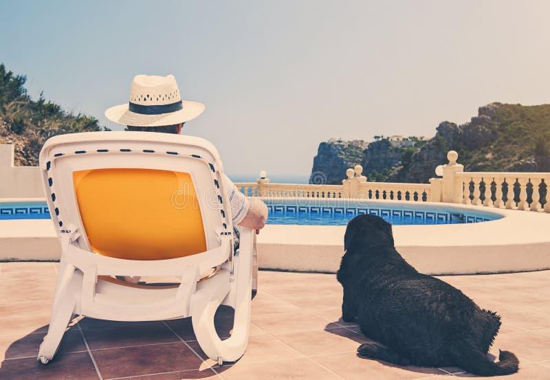 Propriétaire détendant par la piscine avec le chien photographie stock libre de droits
