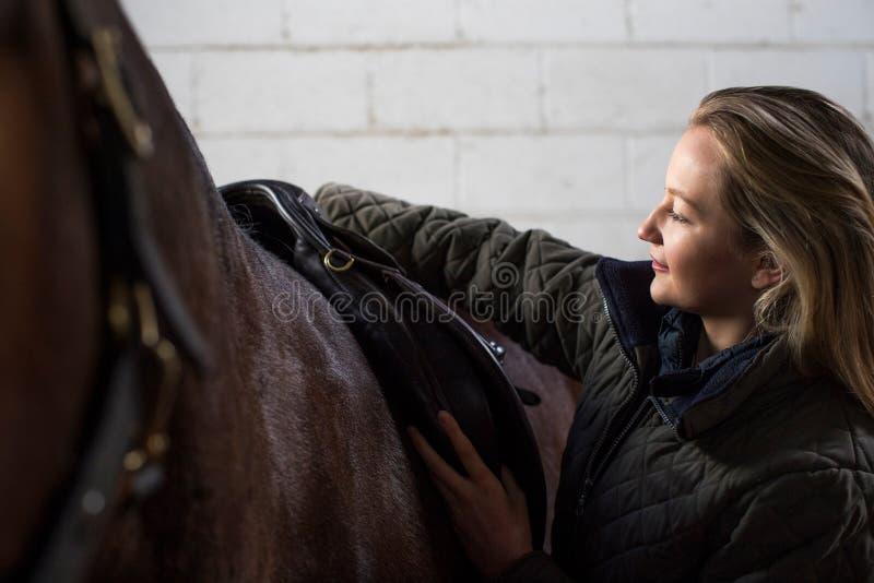 Propriétaire féminin ajustant des courroies de selle dans l'écurie avec le cheval photo libre de droits