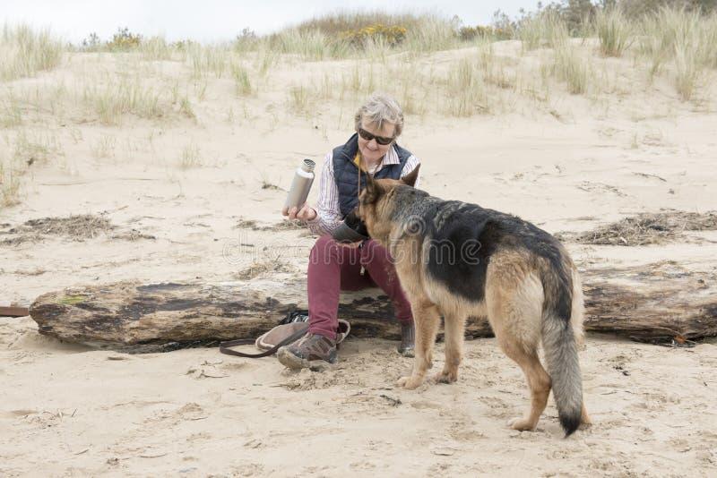 Propriétaire féminin donnant à Alsacien d'animal familier une boisson de l'eau un jour ensoleillé chaud photographie stock