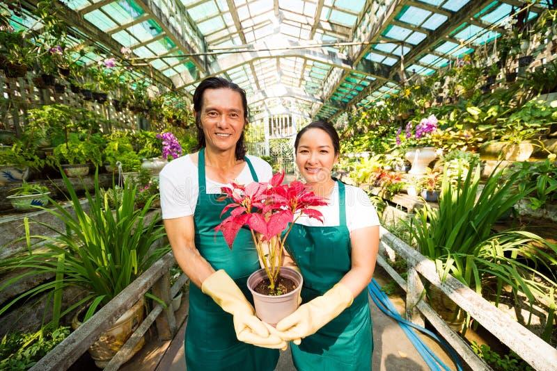 Propriétaires du marché de fleur images libres de droits