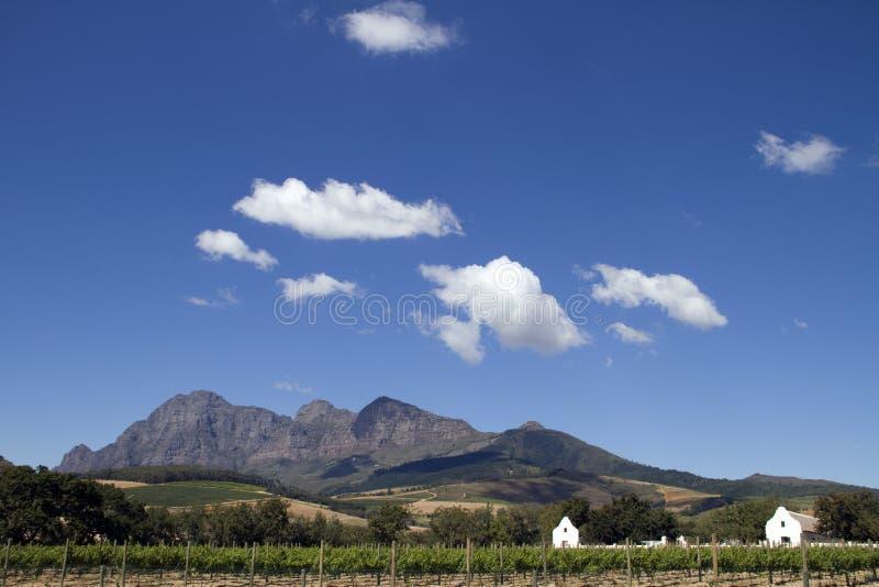 Propriedade cénico África do Sul do vinho de Boland do cabo fotos de stock