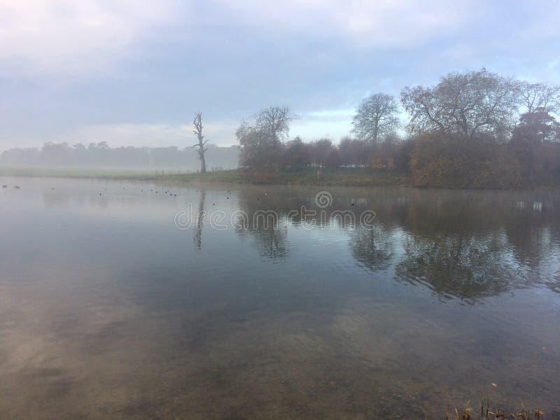 Propriedade de Holkham na névoa 1 fotografia de stock
