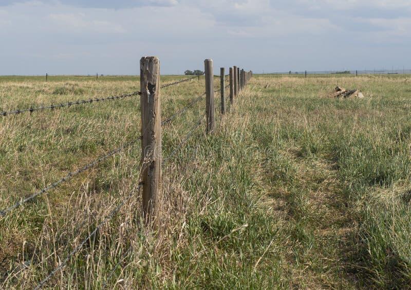 Propriedade de limitação da exploração agrícola da cerca do arame farpado na grama selvagem das pradarias de Alberta imagens de stock royalty free