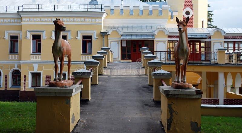 A propriedade do barão von-Derwis em Kiritsakh Sanatório hoje em dia tubercular Região de Ryazan foto de stock