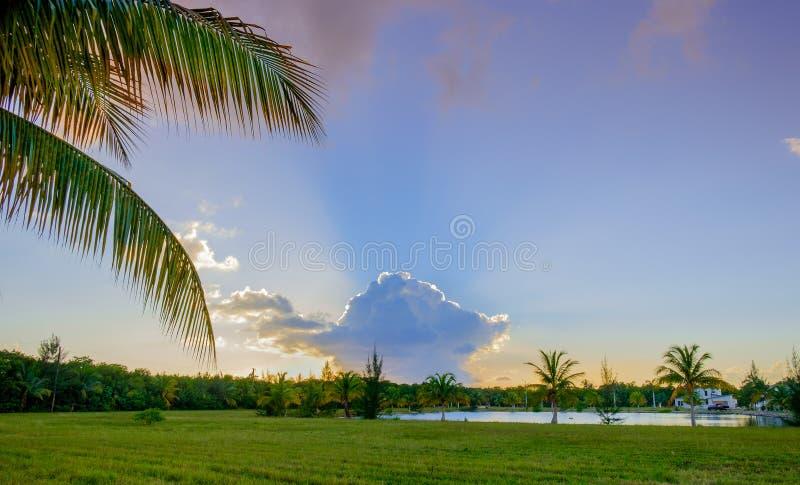 Propriedades da baía da ômega de Grand Cayman fotos de stock