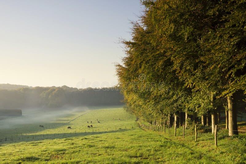 Proprietà di Mariendaal vicino ad Arnhem fotografia stock