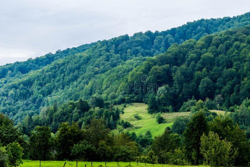Proprietà recintata vicino alla collina della foresta immagini stock