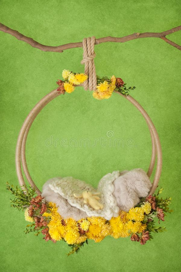 Props on the branch for a photo shoot of a newborn royalty free stock image