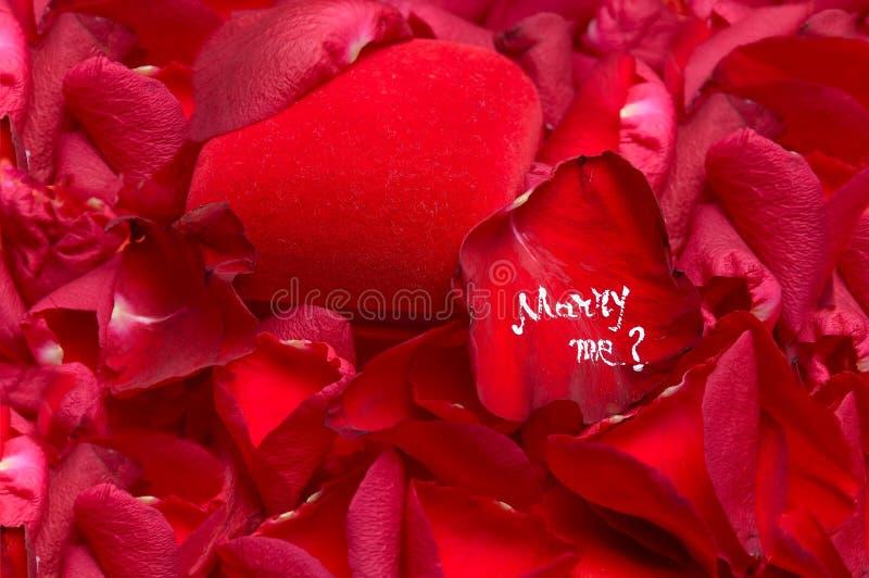 Propuesta de matrimonio romántica imagen de archivo libre de regalías