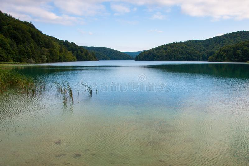 Proscansko Lake, Plitvice Lakes, National Park, Forest, Croatia. Proscansko Lake in National park of Plitvice Lakes situated in Northern Croatia. Picture was royalty free stock photos