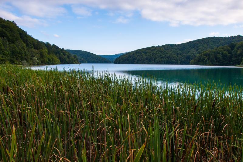 Proscansko Lake, Plitvice Lakes, National Park, Forest, Croatia. Proscansko lake in National park of Plitvice Lakes situated in Northern Croatia. Picture was royalty free stock image