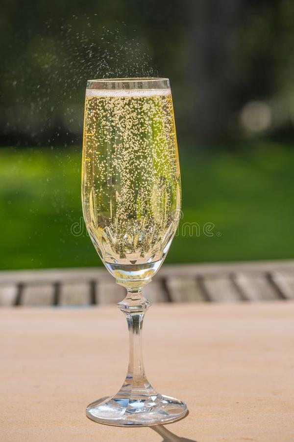 Prosecco with blubber, green background. Sparkle stock photo