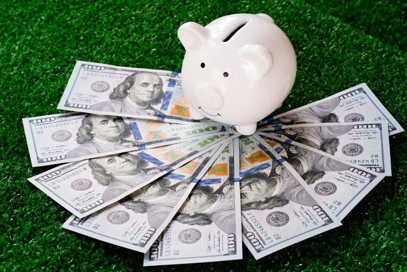 Prosiątko banka stojak nad dolara amerykańskiego banknotem butelki pojęcia dolarowi pieniądze oszczędzania obrazy stock