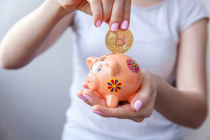 Prosiątko bank, ręka trzyma złotego bitcoin obraz royalty free