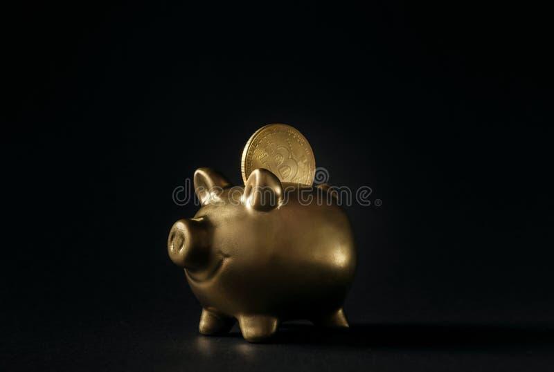 Prosiątko bank robić złoto z bitcoin monetą w menniczej dziurze pojęcie portfla i cryptocurrency depozyty obrazy stock