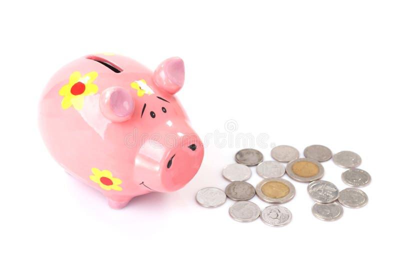 Prosiątko bank z monetami zdjęcia royalty free