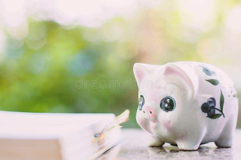 Prosiątko bank z rozpieczętowaną książką dla save pieniądze i edukaci financi obrazy stock