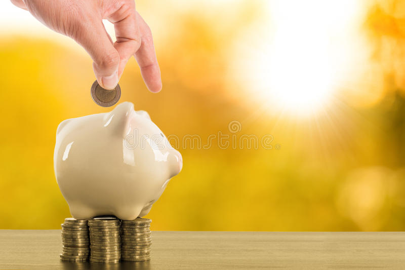 Prosiątko banka wszywka twój pieniądze moneta inside zdjęcia stock