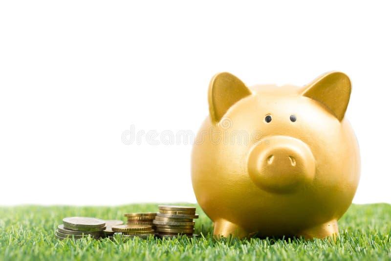 Prosiątko banka złocisty kolor i sterta pieniądze zdjęcia royalty free