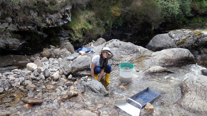 Prospecting For Gold. In a Mountain River Tyndrum, Scotland stock photography