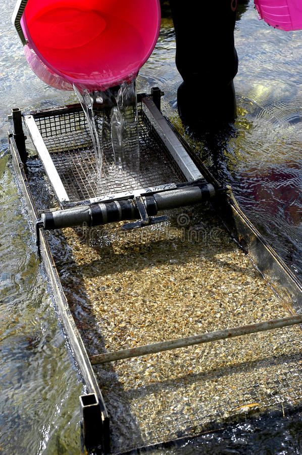 Free Prospector Panning For Gold In River Royalty Free Stock Photos - 28743148