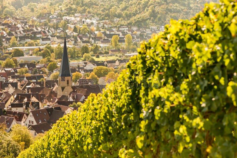 Prospektera från en vingård på den tyska byn Geradstetten fotografering för bildbyråer